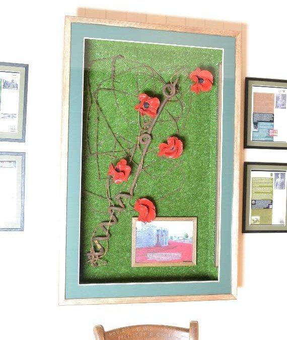 Commemorative World War Poppies Put 'In The Frame'
