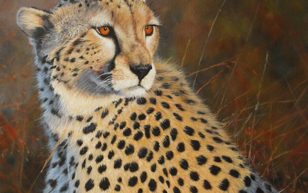 Artist Interview: Pip McGarry (The 'Great' Wildlife Artist)