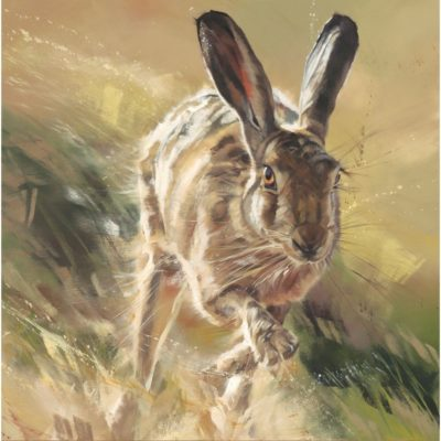Sprinter by Debbie Boon as a print is now available t The Frame in Odham.