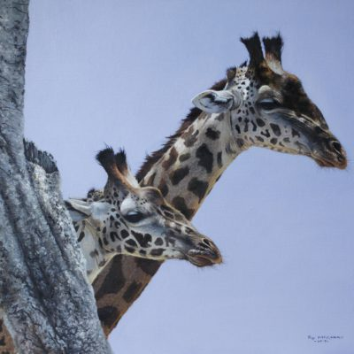 Giraffes of the Mara 24 by 20ins 2017 copy